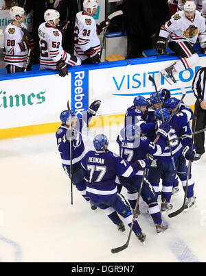 Tampa, Florida, USA. 24th Oct, 2013. DIRK SHADD | Times .Tampa Bay Lightning right wing Martin St. Louis (26) is - Stock Photo