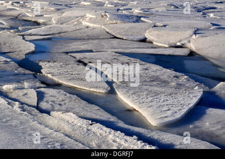 Ice floes on the Baltic Sea off Stein, Probstei, Ploen district, Schleswig-Holstein - Stock Photo