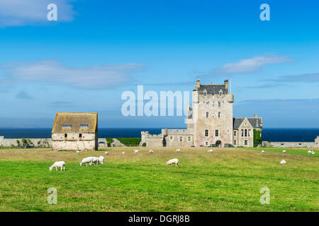 Ackergill Tower near Wick, a castle from the 15th century, on the North Sea coast, Caithness County, Scotland, United - Stock Photo