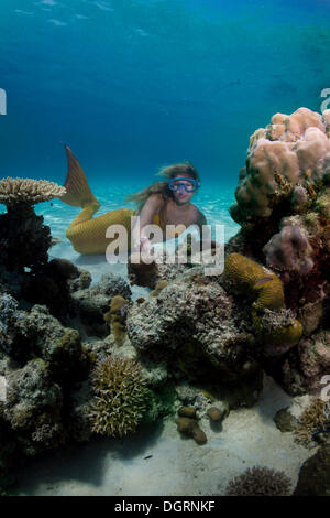 Mermaid, girl wearing a mermaid costume swimming in the shallow water of a lagoon, underwater, Busuanga, Philippines - Stock Photo