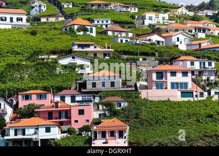 The colorful houses of Câmara de Lobos, Funchal, Estreito de Câmara de Lobos, Ilha da Madeira, Portugal - Stock Photo