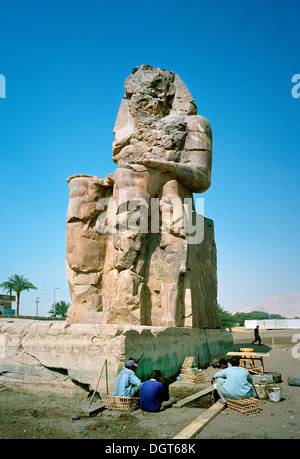 one of the colossi of Memnon on the West Bank of the Nile at Luxor Egypt undergoing conservation and archaeological - Stock Photo