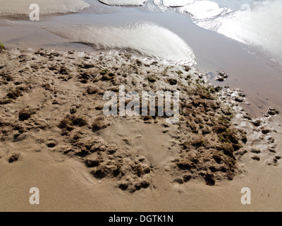 Close up of surf pool on a beach just showing flat sand surface and texture reflecting sunlight - Stock Photo