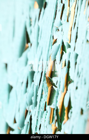 On the door of an old cracked green paint - Stock Photo