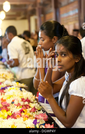 Praying young women sitting in front of flowers, Buddhist shrine, Sri Dalada Maligawa, Temple of the Tooth in Kandy, - Stock Photo