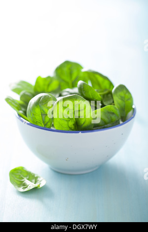 baby spinach leaves in bowl - Stock Photo