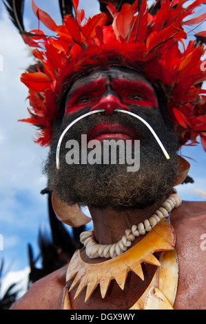 Man in a colourfully decorated costume with face paint at the traditional sing-sing gathering, Hochland, Mount Hagen - Stock Photo