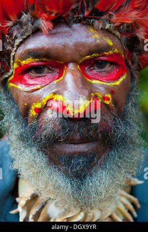Colourfully decorated man with face paint is celebrating at the traditional Sing Sing gathering in the highlands, - Stock Photo