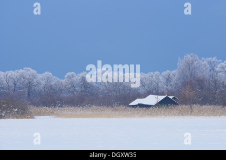 Snow-covered winter landscape with a wooden house in a reed bed, Ammersee, Dießen, Upper Bavaria, Bavaria, Germany - Stock Photo