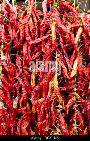 Dried chilli peppers in the vegetable market in Rovinj, Rovingo, Istria, Croatia, Europe, Rovinj, Croatia - Stock Photo