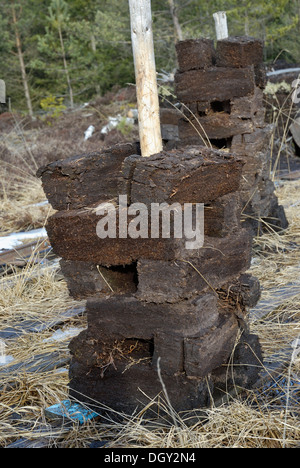 Stacks of peat sods left to dry, peat harvesting, Nicklheim, Bavaria - Stock Photo