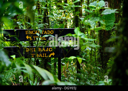Two signs at an intersection on one of the trails at the Santa Elena Biological Reserve - Stock Photo