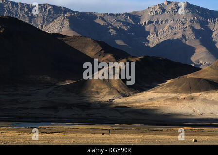 Shepherd with a dog in front of the dry brown landscape of the Himalayas at the Friendship Highways on the plateau - Stock Photo