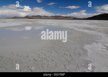 Salt lake in the Drangyer salt field, Drangyer Tsaka, in the Changtang high plateau, Western Tibet, Ngari Province, - Stock Photo