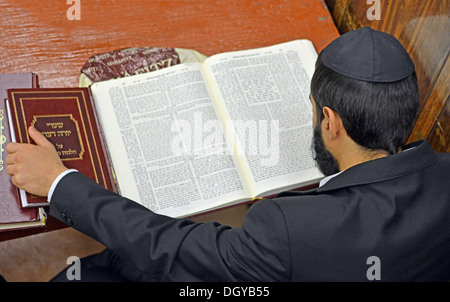 Lubavitch Hasidic student studying Talmud at their headquarters and synagogue at 770 Eastern Parkway in Brooklyn, - Stock Photo