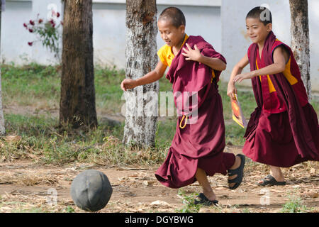 Young monks playing football, Tibetan refugee settlement in Bylakuppe, Mysore District, Karnataka, South India, - Stock Photo