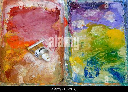 Tube of paint on a painter's palette, oil paints, Zurich, Switzerland, Europe