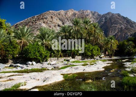 Wadi Ar Raqeem, Nakhar, Oman - Stock Photo