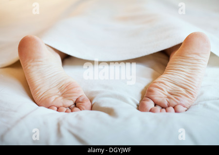 laziness and sleep - Stock Photo