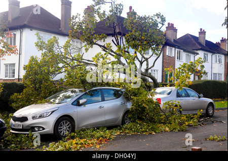 A Suburban Road with two cars severely damaged under a fallen tree after  'St Judes Storm' created over night gale - Stock Photo