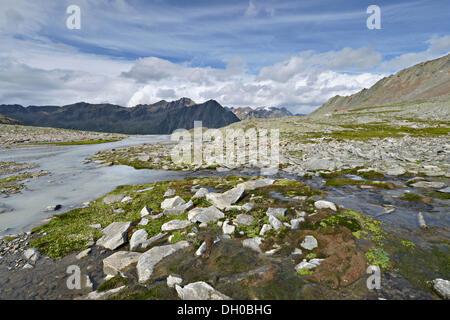 Timmelsbach stream at Timmelsjoch high mountain pass, Stubai Alps at back, Timmelstal Valley, Tyrol, Austria, Europe - Stock Photo