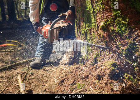 Lumberjack with chainsaw in use - Stock Photo