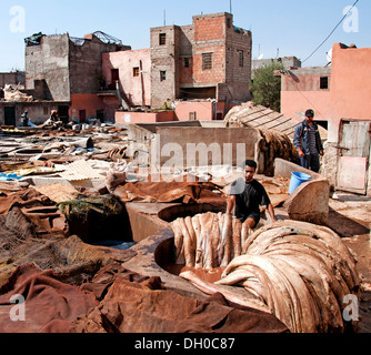 Tanneries ( Tannery )  Leather and skin processing outdoor tanning vats north of Medina district Marrakech  Morocco - Stock Photo