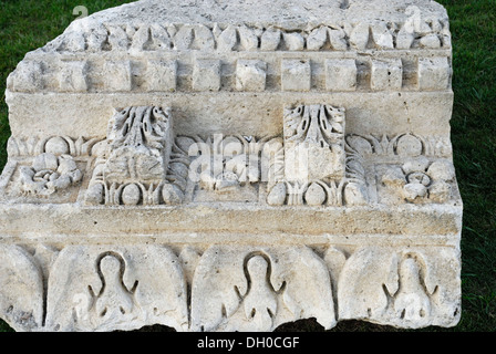 Europe croatia zadar the forum 1st century bc to 3rd century roman ornaments on limestone a fragment of a temple frieze 1st 2nd century publicscrutiny Image collections