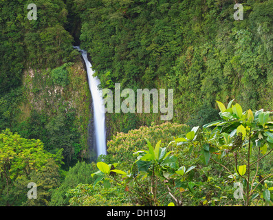 Distant view of La Fortuna Waterfall amongst the rainforest near Arenal Volcano in Costa Rica - Stock Photo