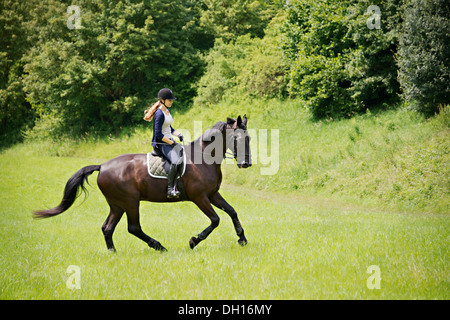 Woman Riding Horse in Rural Landscape, Baden Wuerttemberg, Germany, Europe - Stock Photo