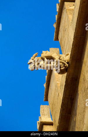 Detail of La Lonja de la Seda, Valencia, Spain - Stock Photo