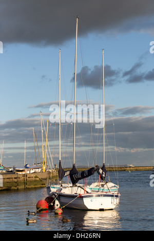 Sailing boat moored on the River Stour in Christchurch, Dorset. - Stock Photo