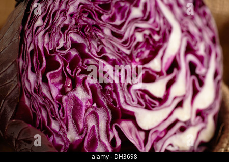 Red cabbage cut in half - Stock Photo