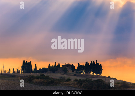 House with the famous Cypress trees in the heart of the Tuscany, near Pienza, Italy - Stock Photo