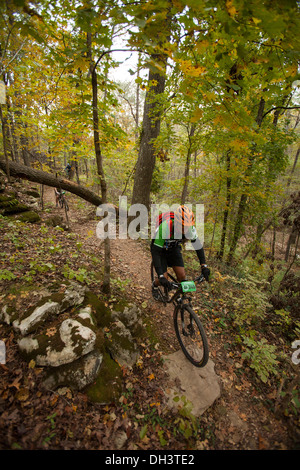 A mountain biker rides along a forest trail system at Blowing Springs Park in Bella Vista, Arkansas. - Stock Photo