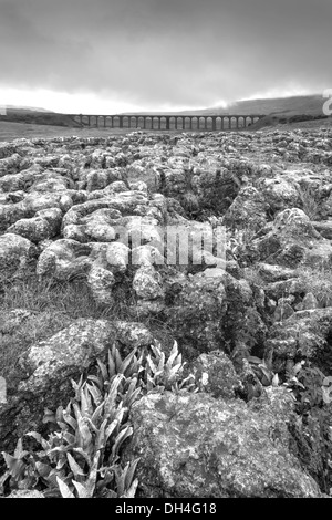 Looking across Limestone Pavements and the Ribblehead Viaduct on the Settle to Carlisle Railway, North Yorkshire, - Stock Photo
