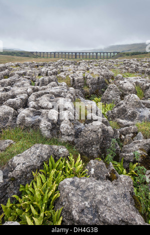 Looking across Limestone Pavements to the Ribblehead Viaduct on the Settle to Carlisle Railway, North Yorkshire, - Stock Photo