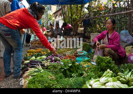 Horizontal portrait of a young Laos girl buying vegetables at the daily fruit and vegetable market in Luang Prabang. - Stock Photo