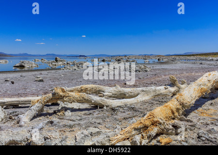 Mono Lake Shore and Tufa Formations, California - Stock Photo