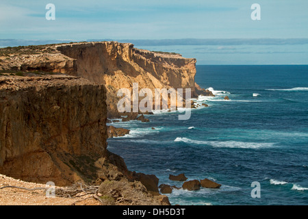 High cliffs and turquoise blue waters of southern ocean near Point Labatt seal colony on Eyre Peninsula South Australia - Stock Photo