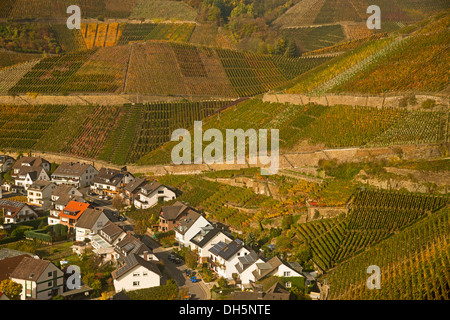 Wine village of Dernau an der Ahr, vineyards in the Ahr Valley, where red wine grapes of the varieties Pinot Noir - Stock Photo