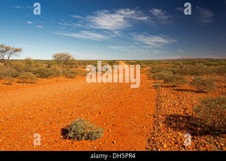 Landscape with long red dirt road / Hugh River stock route , cutting across barren treeless outback plains in central - Stock Photo