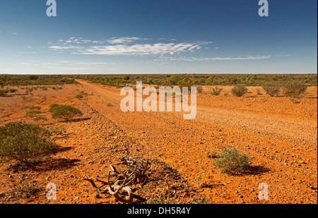Landscape with long red dirt road / Hugh River stock route , cutting across barren outback treeless plains in central - Stock Photo