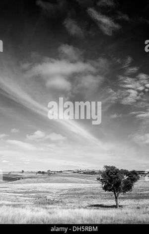 Black and White Big Sky Australia - Stock Photo