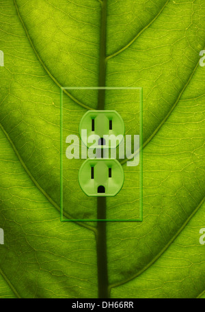 Close-up of a green plant leaf with green colored electrical outlets added. - Stock Photo