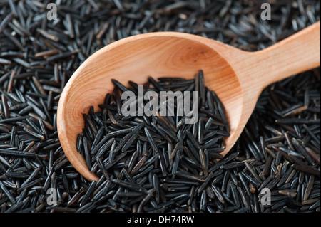 Wild Rice In Wooden Spoon - Stock Photo