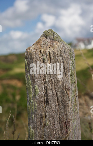 Closeup of decaying wooden fence post. - Stock Photo