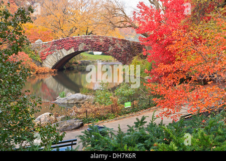 Gapstow Bridge on the Central Park Pond covered in red ivy and surrounded by beautiful fall foliage in New York - Stock Photo