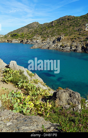 Cove with clear water in Mediterranean sea, Tamariu, Puerto de la Selva, Costa Brava, Catalonia, Spain - Stock Photo