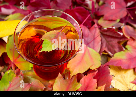 Horizontal photo sparkling apple cider, single maple leaf in center of drink, with seasonal autumn leaves surrounding - Stock Photo